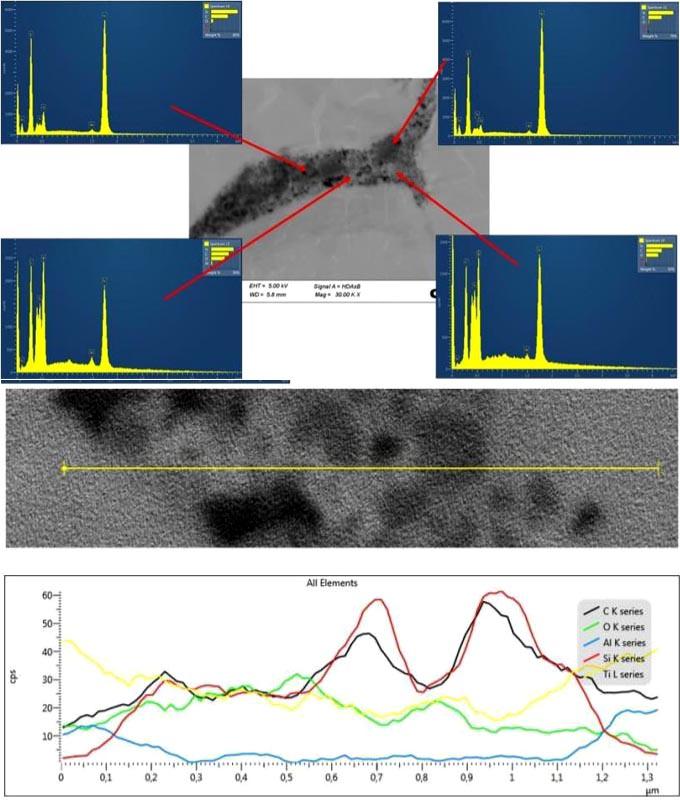 Matriz de Ti6Al4V consolidado con nanopartículas de carburo de silício (SiC) y recubrimiento de dióxido de titanio (TiO2) por HIP, para producir electrodos para el proceso EIGA.