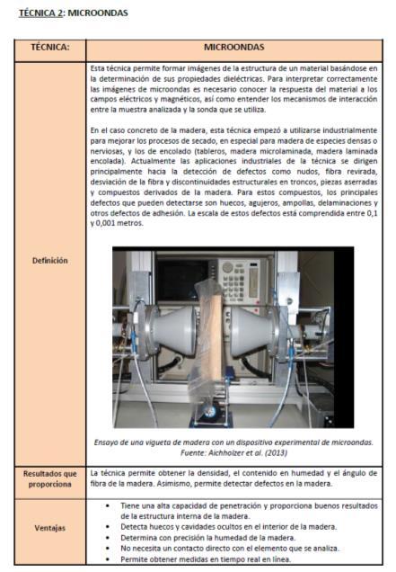 Imagen 4. Primera hoja de la ficha de la técnica de microondas.