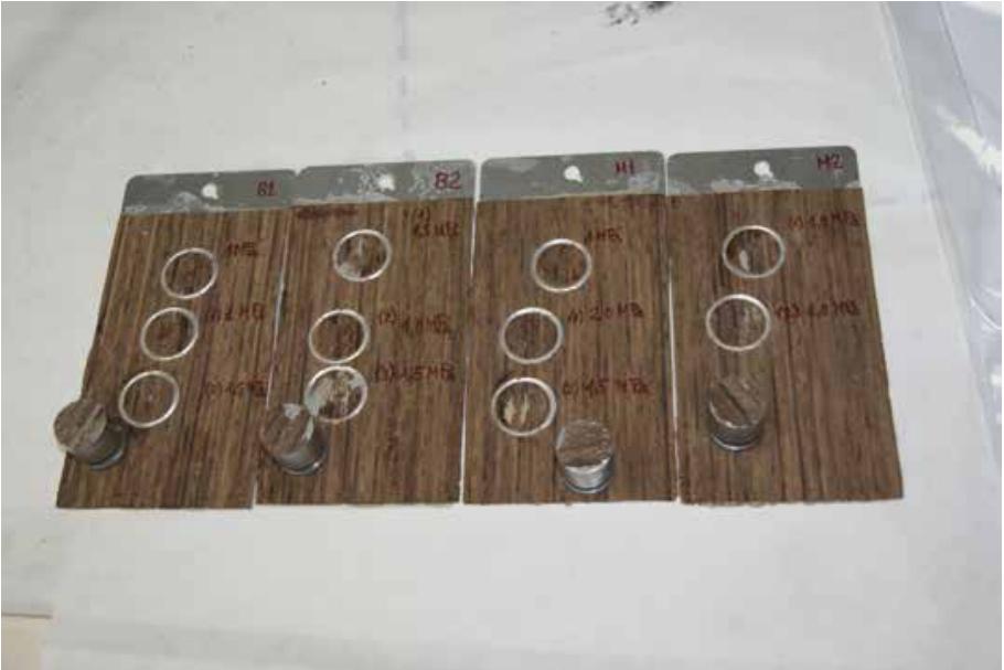 Muestras de aluminio-chapa de madera ensayadas