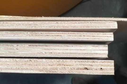 Tableros de paulownia de diferentes espesores desarrollados en el proyecto