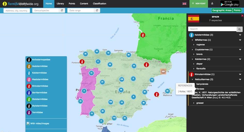 Primeras localizaciones de termitas en España en el sistema termiteworldwide.org.