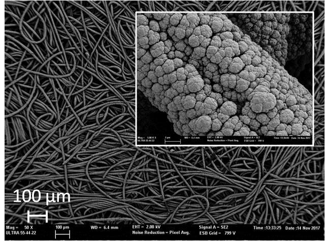 Micrografías de un cátodo recubierto con nanopartículas de Pt.